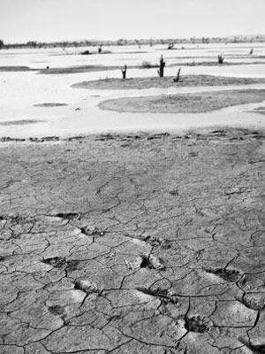 Monochrome photography, Black-and-white, Monochrome, Drought, Dry lake, Walking,