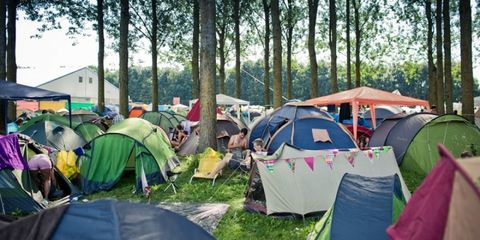Tent, Camping, Recreation, Leaf, Style, Outdoor recreation, Woody plant, Tints and shades, Rural area, Tarpaulin,