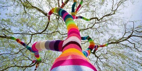 Branch, Colorfulness, Textile, Pink, Magenta, Twig, Creative arts, Spring, Craft,