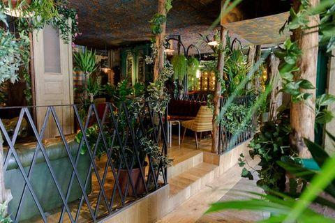 Interior design, Door, Porch, Houseplant, Outdoor structure, Hacienda, Yard, Eco hotel, Courtyard,