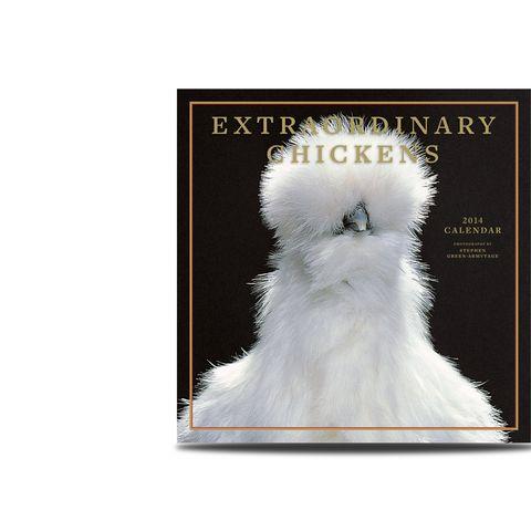 extrodinary-chickens-calendar-2014-43