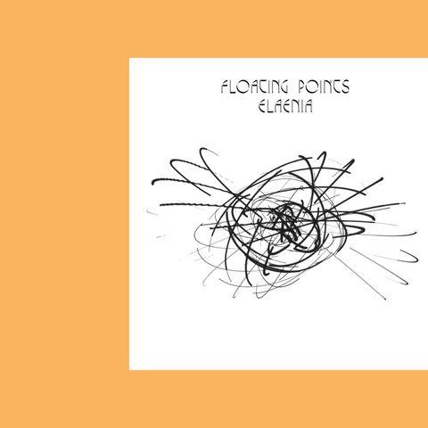 Floating-Points-Elaenia-43