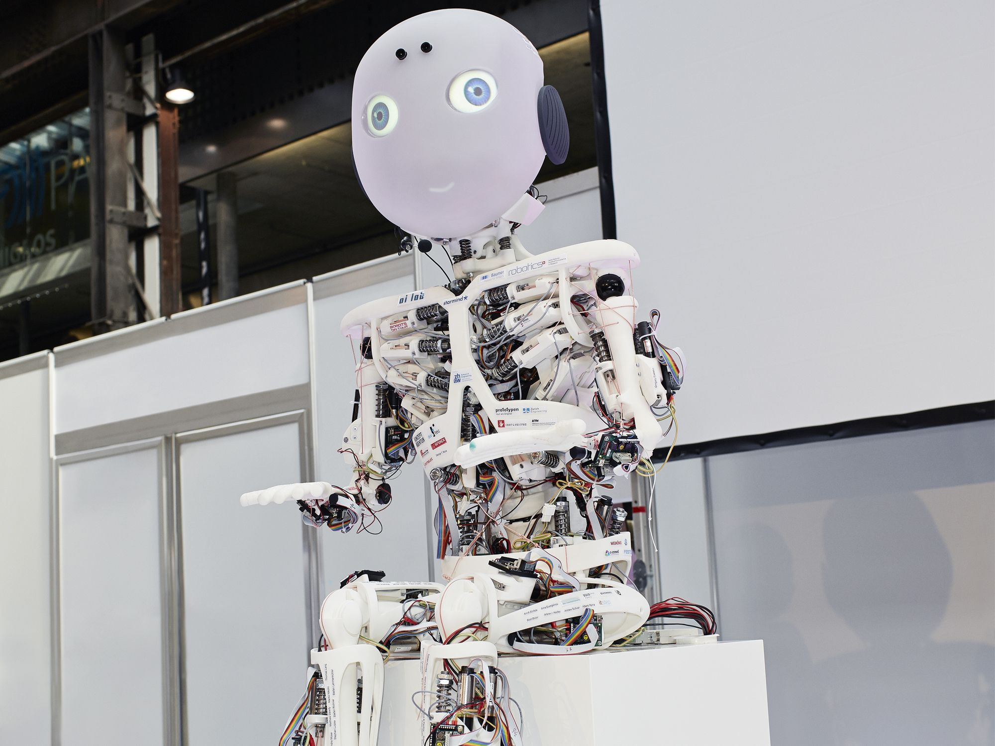 Are Robots Going To Destroy Us All?