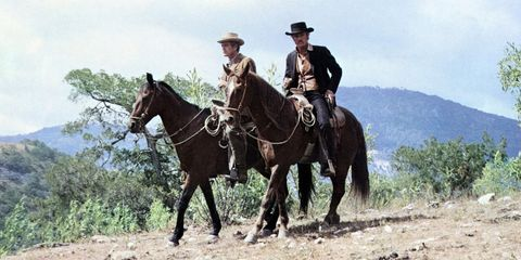 Horse, Rein, Bridle, Western riding, Halter, Animal sports, Equestrianism, Pack animal, Recreation, Wrangler,