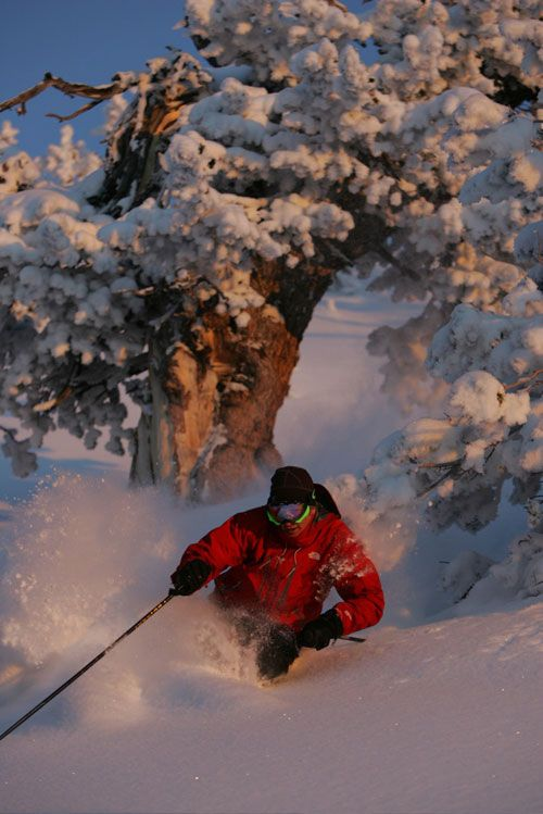 ruby-mountains-helicopter-skiing-experience-3.jpg