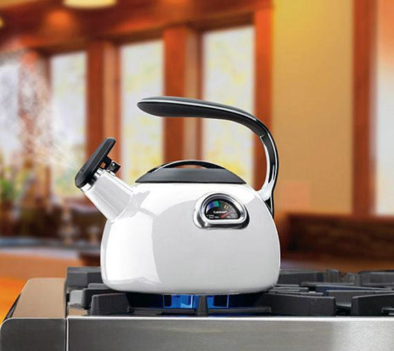 cuisinart-perfetemp-tea-kettle