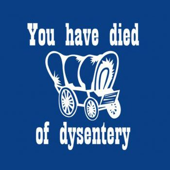 you-have-died-of-dysentery-oregon-trail-tshirt