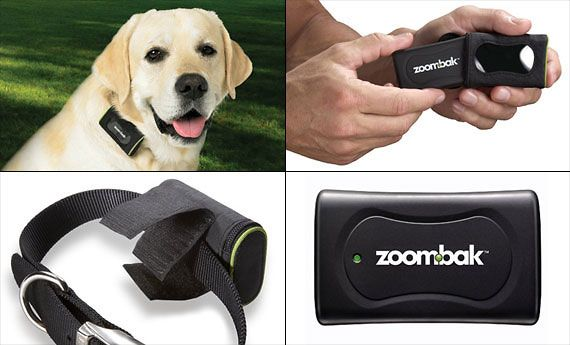 zoombak_pet_gps_final