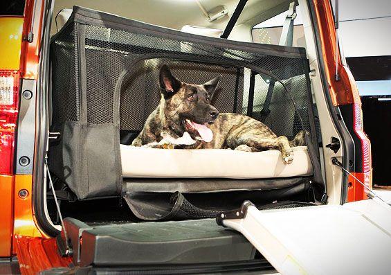 dog-friendly-honda-element-interior