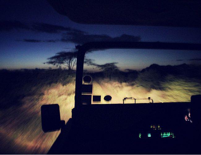 glimpses-of-the-wild-gear-patrol-slide-11