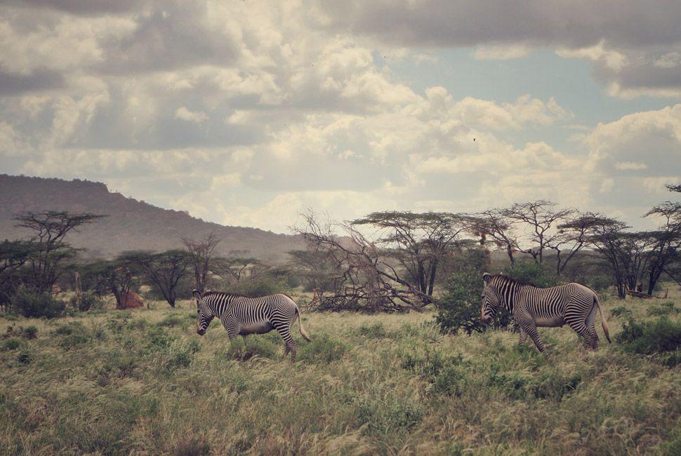 kenya-safari-slide-1