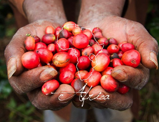 africa-coffee-beans