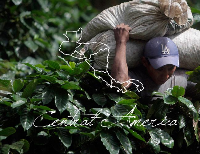 central-america-coffee-beans