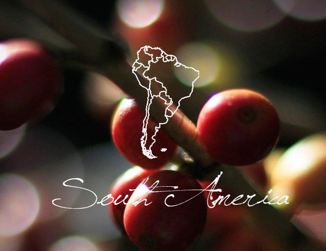 south-america-coffee-beans