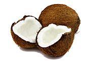 Coconut-Gear-Patrol