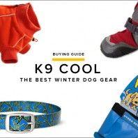 K9-Cool-Winter-Dog-Gear-Gear-Patrol-Lead