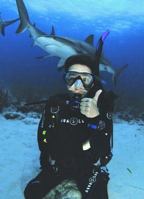 dive-adventures-sidebar