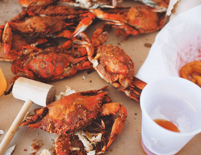 crustacean essays Check out our top free essays on crustaceans to help you write your own essay.