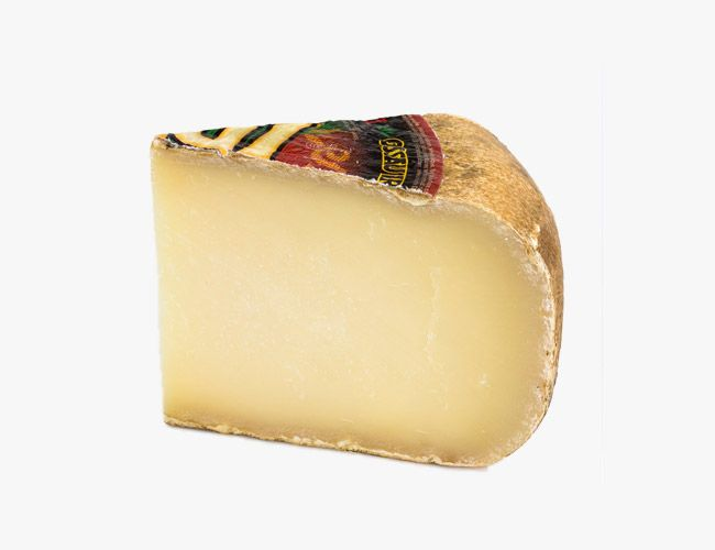 Cheese-Gear-Patrol