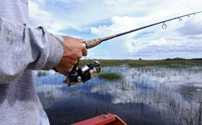 Everglades-Photo-Essay-Gear-Patrol-SIDEBAR