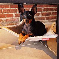 Puppy-Crib-Gear-Patrol