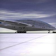 Whale-Plane-Gear-Patrol
