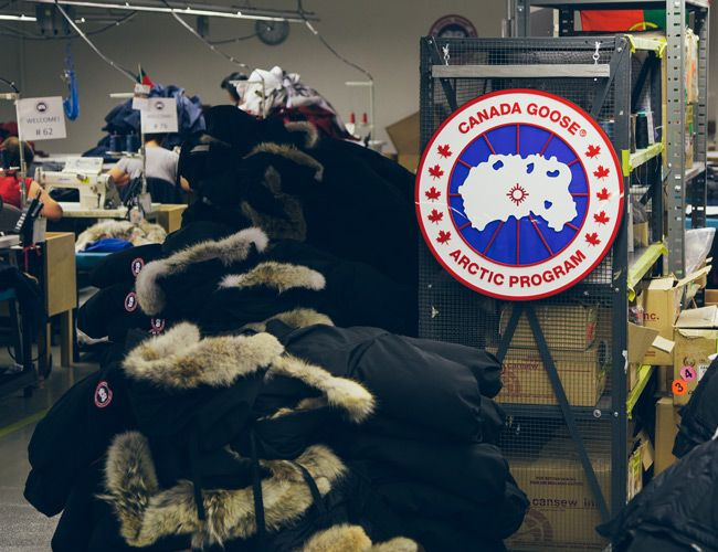 Canada Goose' price 8 by 10