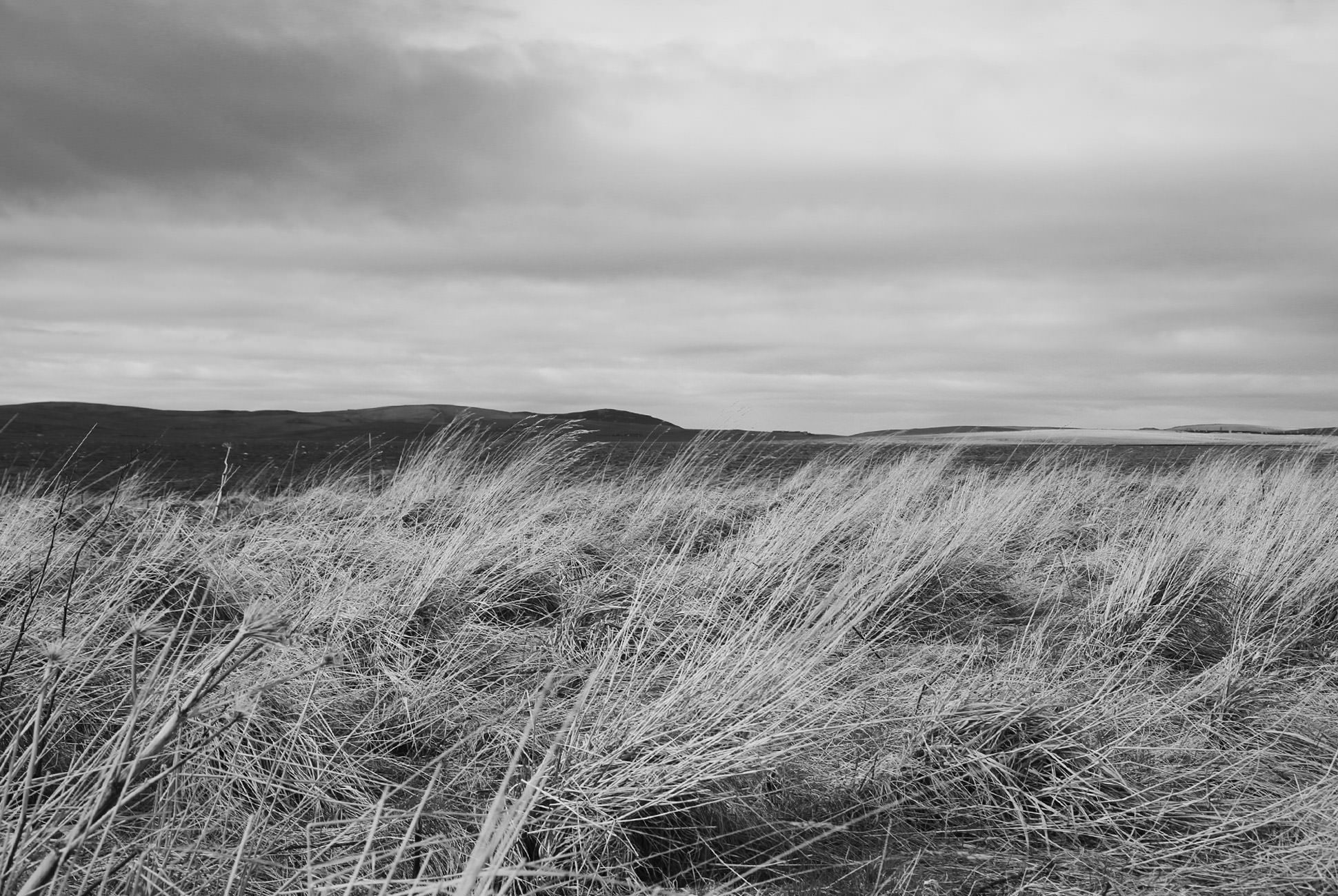 A quiet moment in the Orkney Islands. Photo by Ben Bowers.