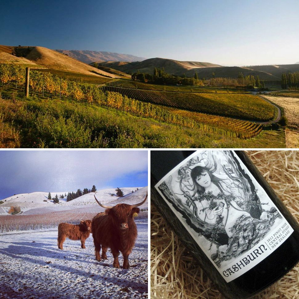 The 10 Best Wineries In New Zealand