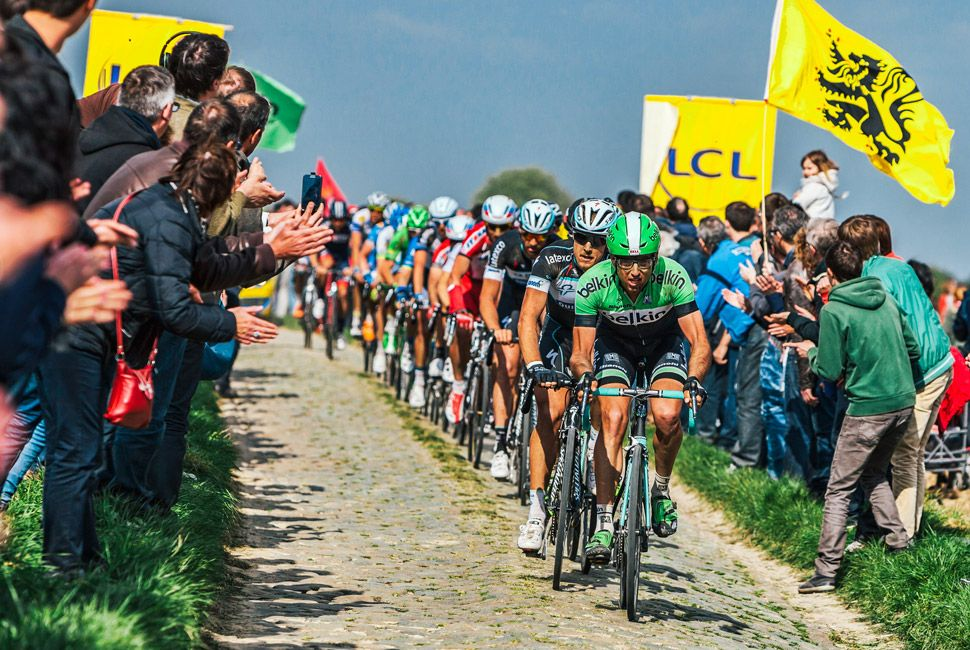 The Peloton- Paris Roubaix 2014