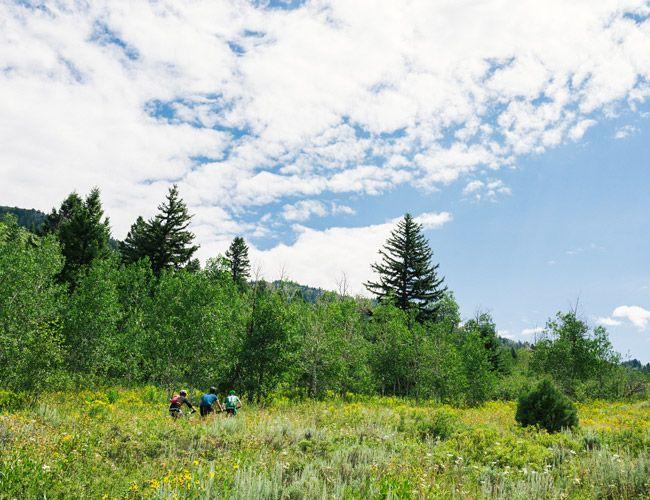 Best-Mountain-Bike-Trails-Wyoming-Gear-Patrol-Lead