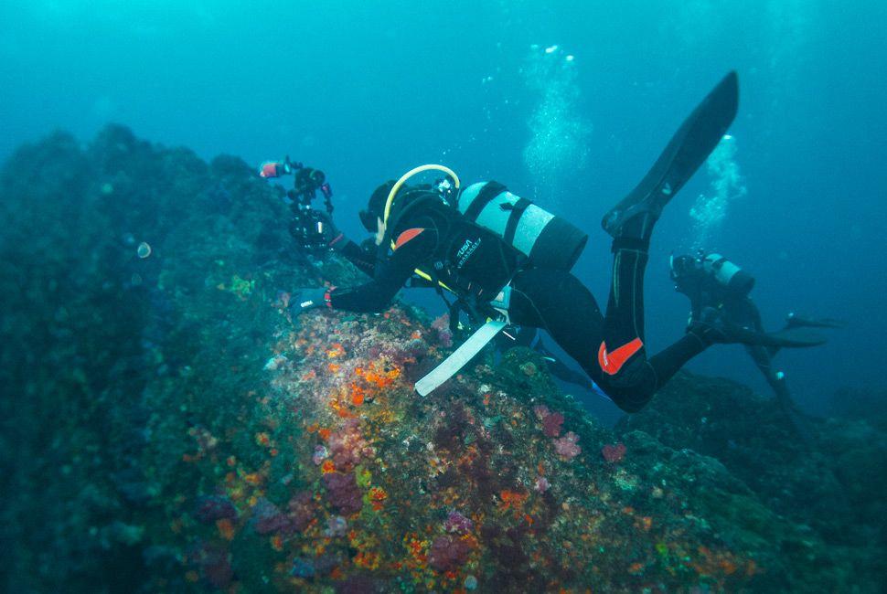 Diving-Japan-Gear-Patrol-Slide-1