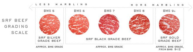 Marbling, or intramuscular fat, is the primary factor considered when meat is graded. The USDA grades meat, in order of decreasing quality, as Prime, Choice, Select and Standard. Snake River Farms doesn't sell anything below Prime, so they chose to use an in-house measuring system to distinguish between their products. Their meat falls into three categories, based on the Japanese BMS (Beef Marbling Scale): SRF Silver, which is graded as a 5; SRF Black, graded 6-8; and SRF Gold, graded 9-12.