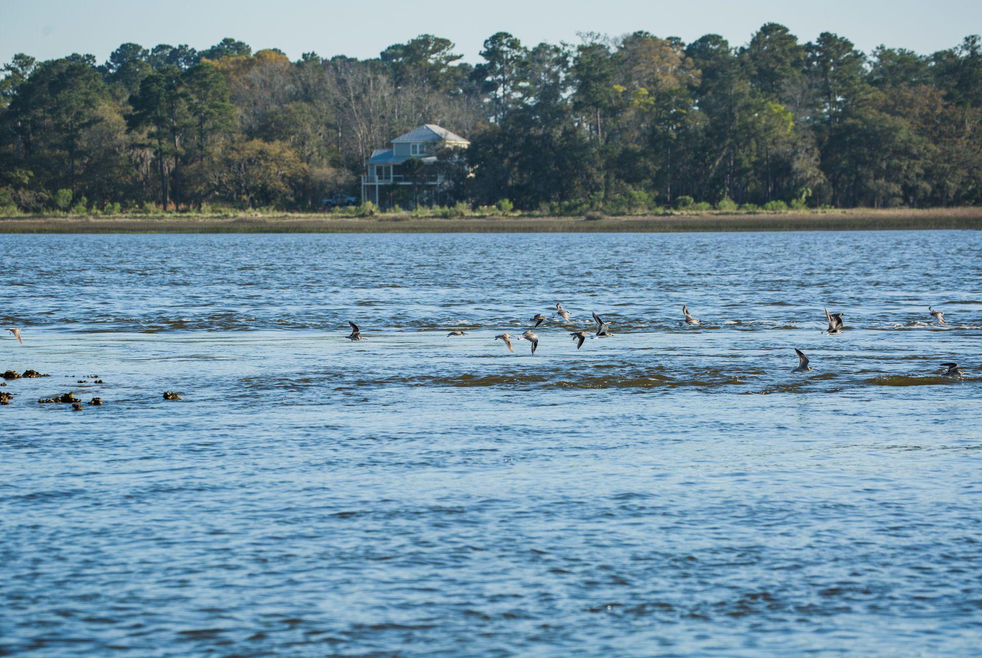 Charleston-Seafood-Gear-Patrol-Purveyors-21