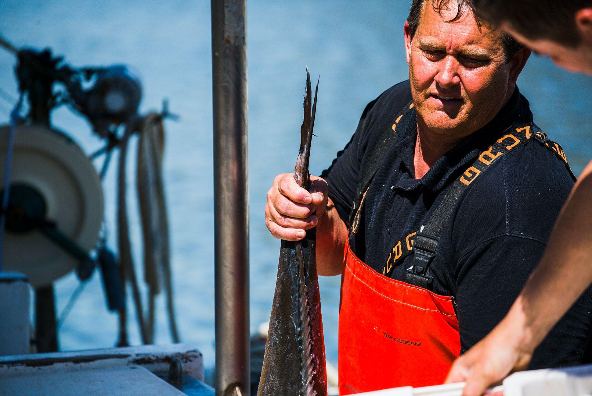 Charleston-Seafood-Gear-Patrol-Purveyors-8