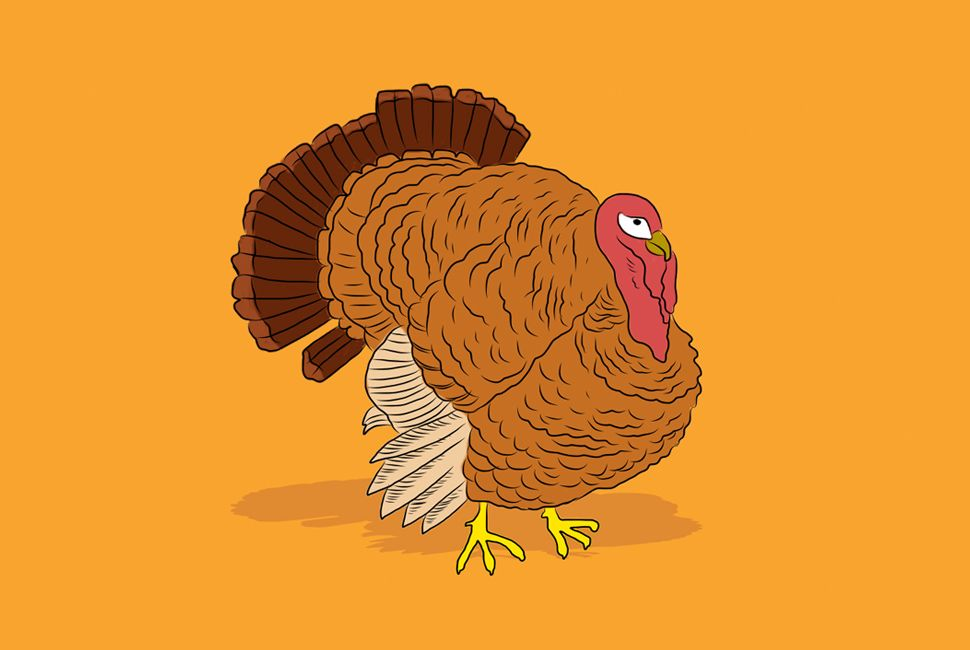 gear-patrol-turkey-lead-full2