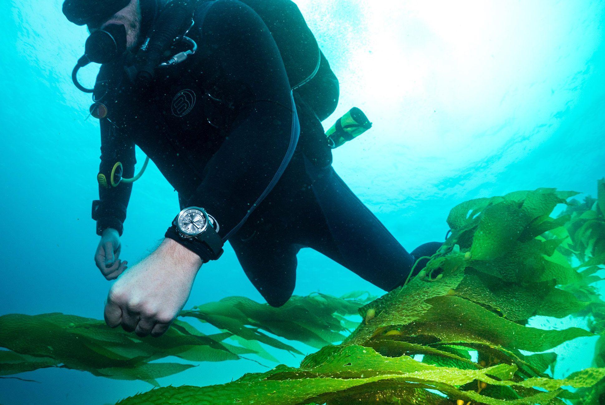 IWC-Aquatimer-Sharks-Gear-Patrol-Lead-Full