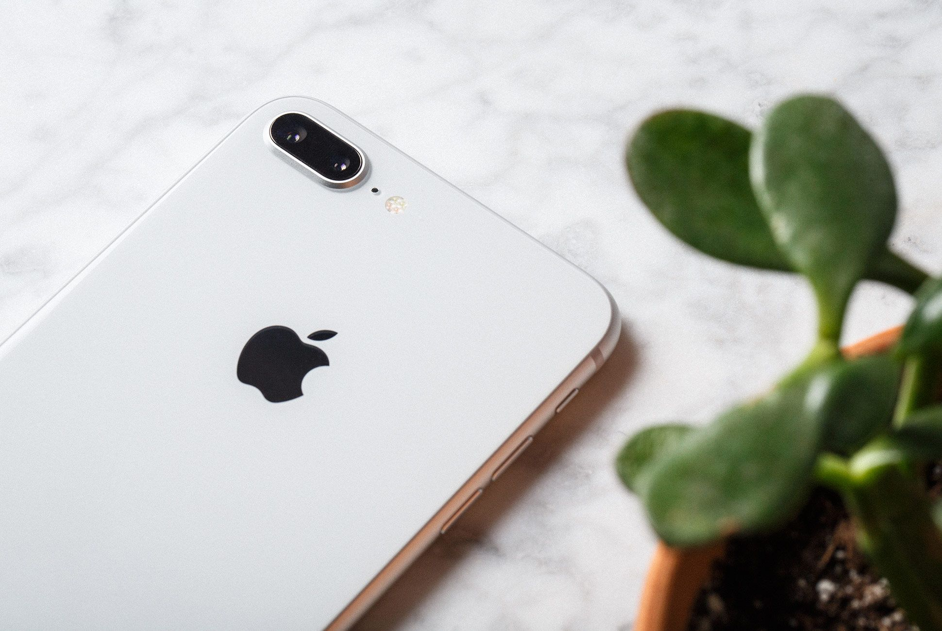 Apple-iPhone-8+-gear-patrol-2