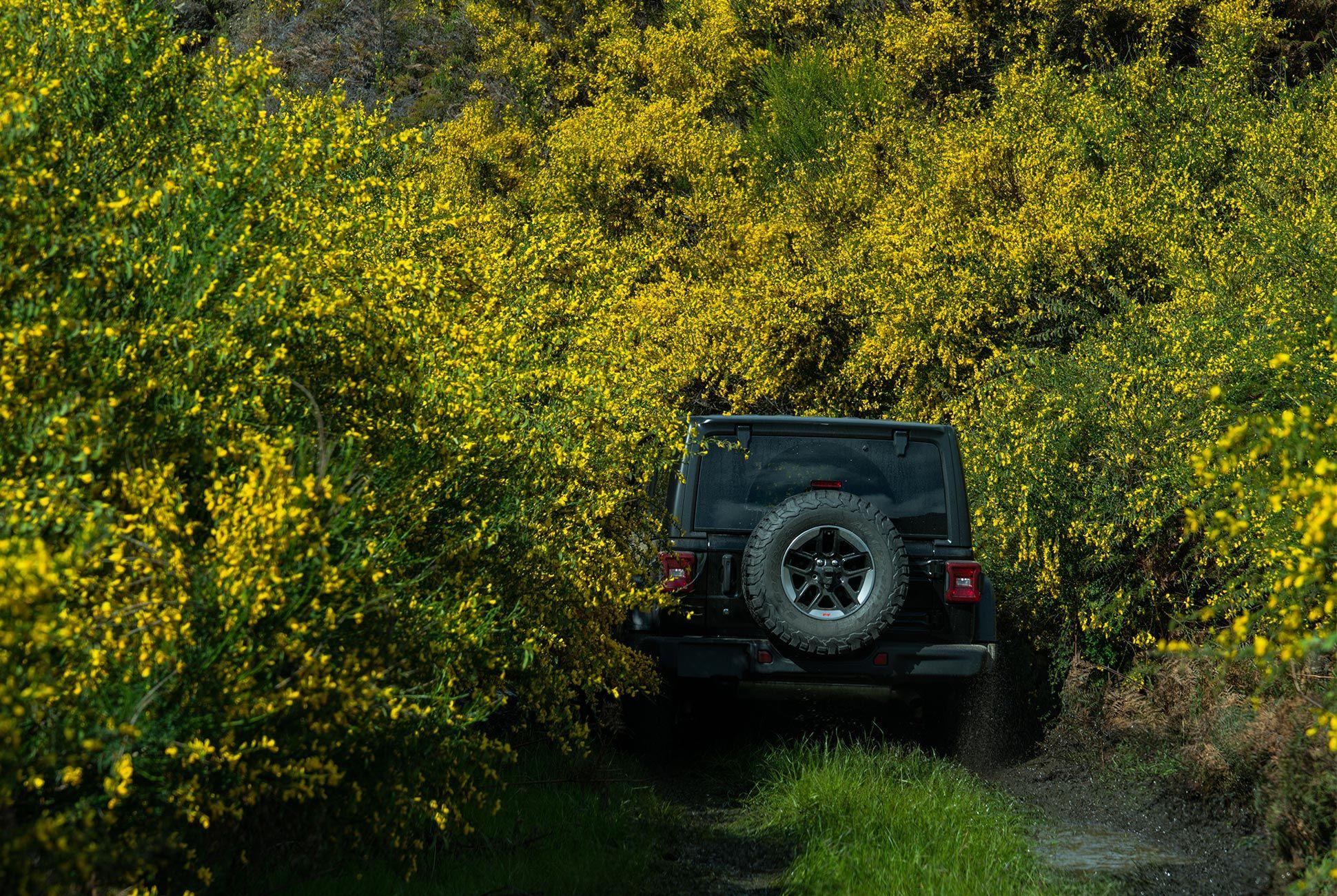 2018-Jeep-Wrangler-Review-gear-patrol-7