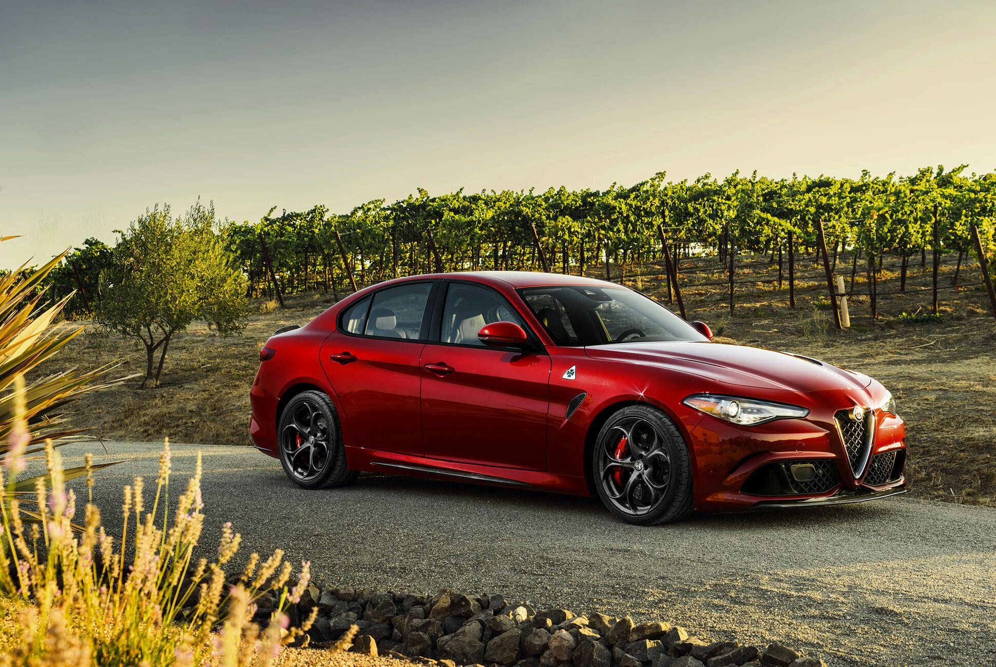 The 2019 Alfa Romeo Giulia and Stelvio Quadrifoglio Offer