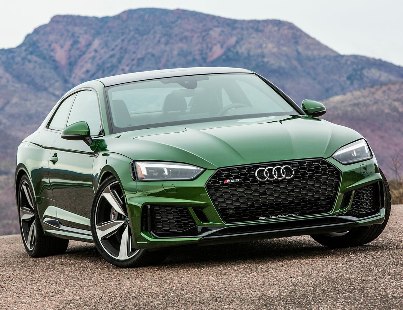 The Complete Audi Buying Guide: Every Model, Explained ... | audi all cars list