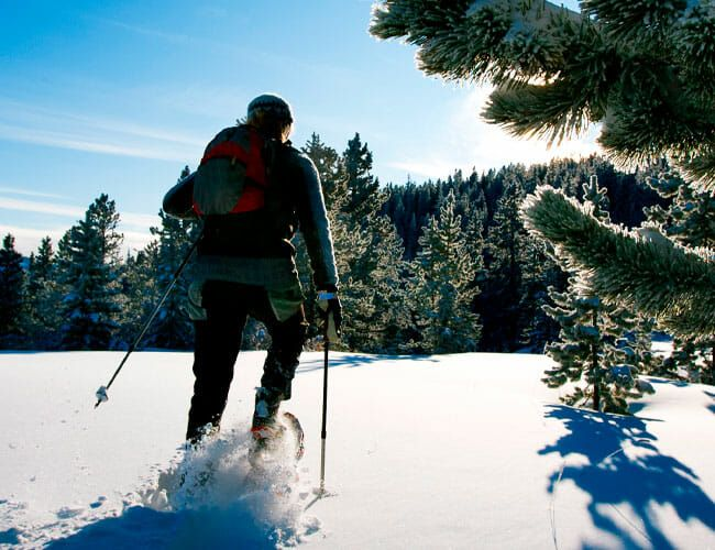 The Best Pants for Winter Hiking