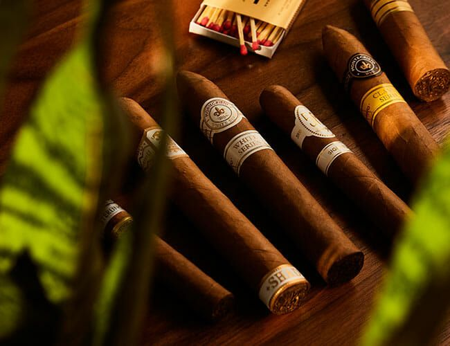 The Best Cigars for Beginners Share One Thing in Common