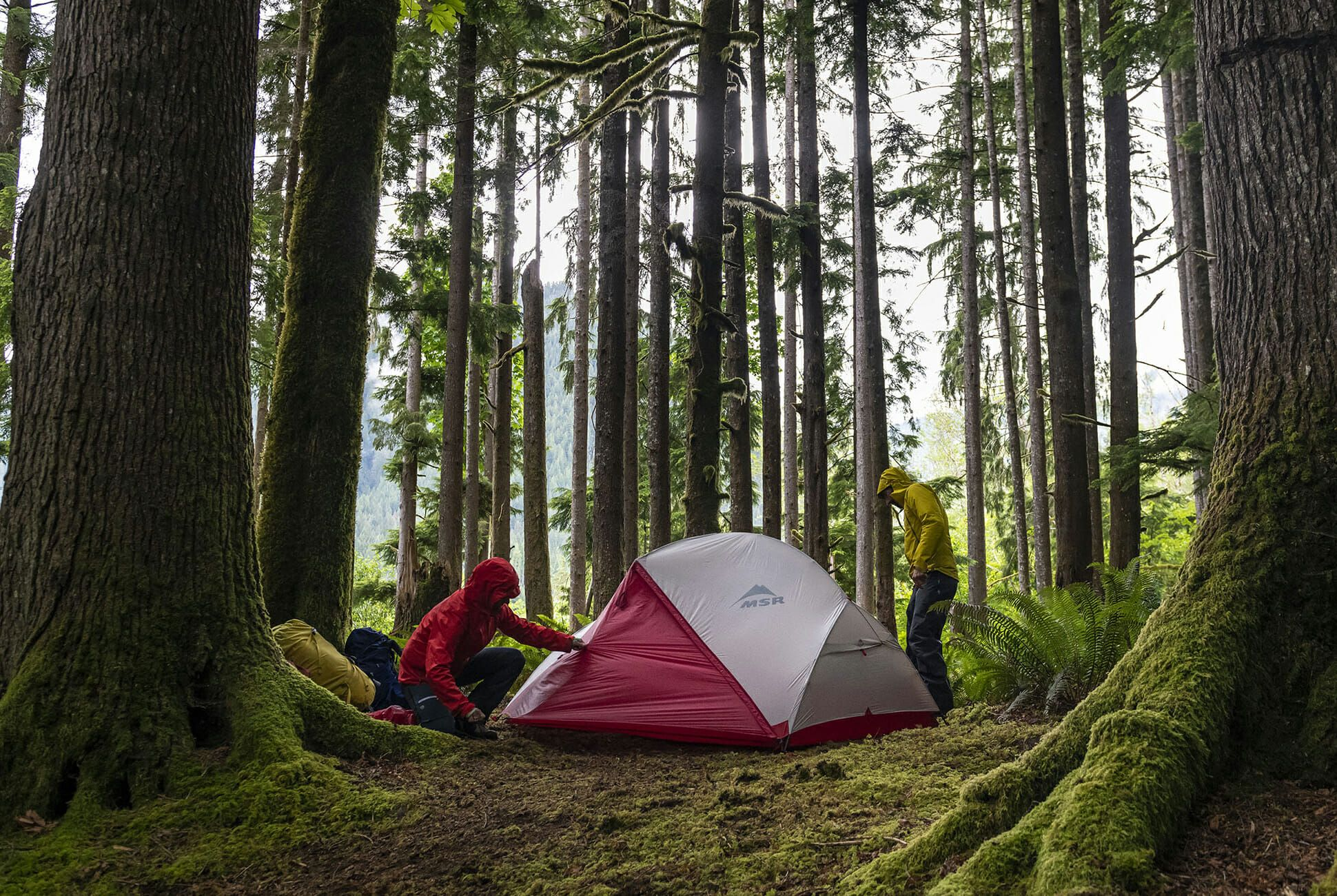 Best Backpacking Tents 2020.The 6 Best Backpacking Tents Of 2019 Gear Patrol