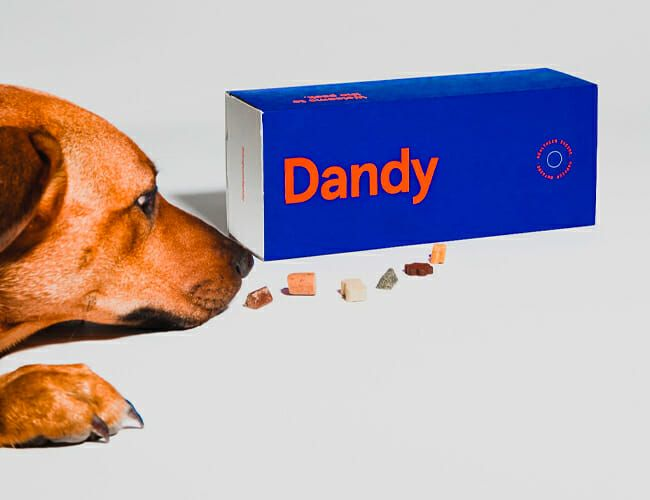 Customized Dog Treats Could Take Over Pet Care