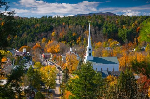 Tree, Leaf, Spire, Woody plant, Steeple, Roof, Autumn, Chapel, Deciduous, Tower,