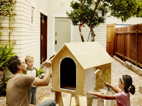 Real estate, House, Home, Backyard, Doghouse, Home fencing, Yard, Pet supply, Kennel, Cottage,