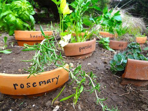 Terracotta Garden Markers