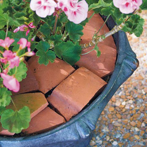 Line Planter with Terracotta Pots
