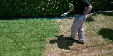 Grass, Shoe, Sports equipment, Ball game, Golf club, Golf equipment, Golf course, Outdoor recreation, Golfer, Lawn,